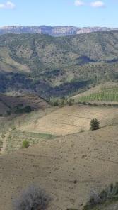 Priorat Spain